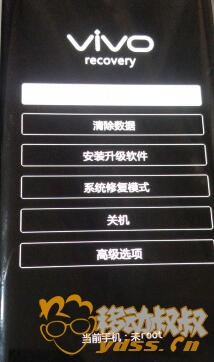 VIVO 清除的 (2).jpg